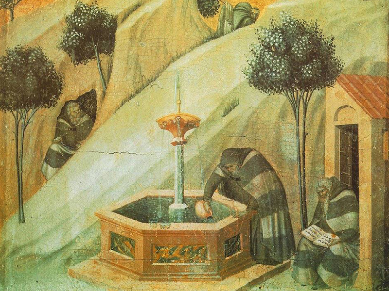 Drinking from the Well of Carmelite Spirituality